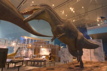 Dinosaur Mysteries